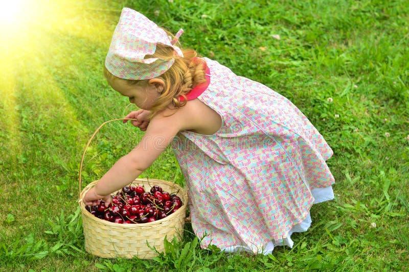 Dziewczyna w sukni z koszem czerwone wiśnie zdjęcia stock