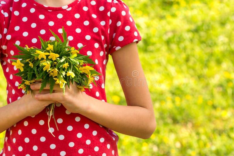 Dziewczyna wręcza chwytom małego bukiet wildflowers zdjęcia royalty free
