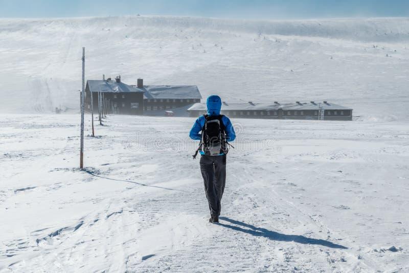 Dziewczyna wycieczkuje w Gigantycznych górach w kierunku Lucni bouda na pogodnym zima dniu z smyczkowym marznięcie wiatrem, Krkon obraz royalty free