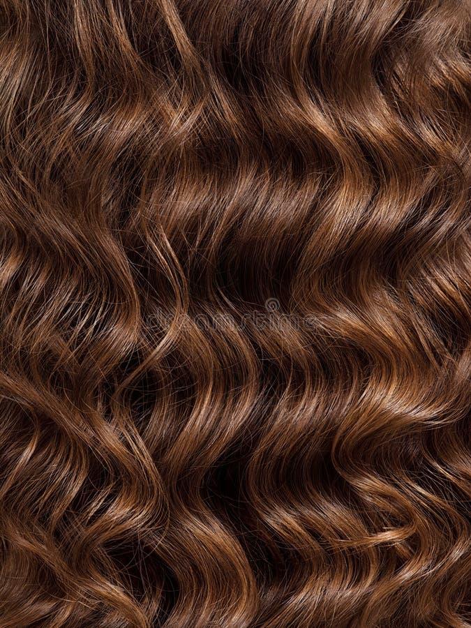 Dziewczyna z długim, kędzierzawym włosy, tylni widok Włosiana tekstura, w górę obraz stock
