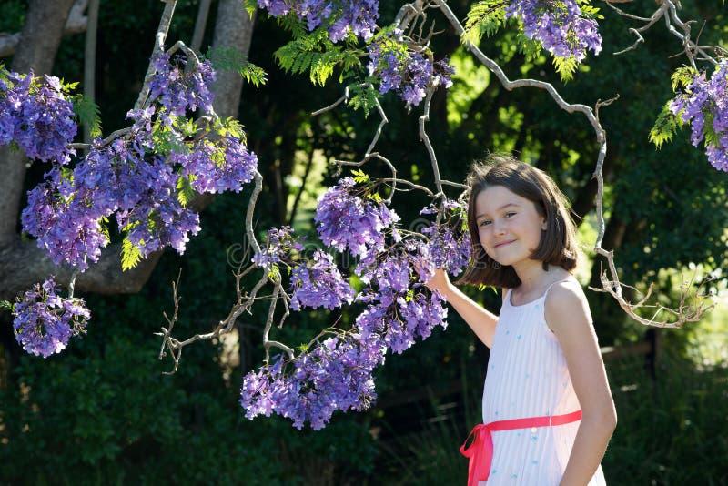 Dziewczyna z jacaranda kwiatami obrazy royalty free