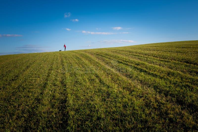 Dziewczyna z jej psem na trawie i niebie zdjęcia stock