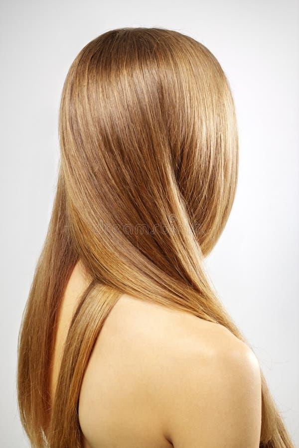 Dziewczyna z pięknym prostym włosy fotografia royalty free
