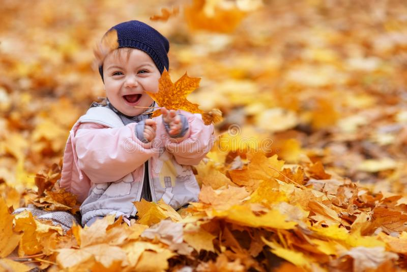 Dziewczynka śmia się i bawić się z złotymi liśćmi zdjęcia stock