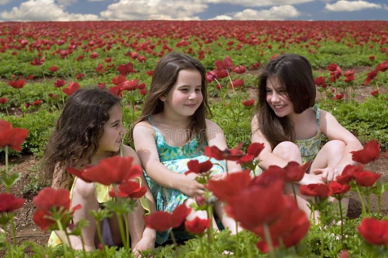 dziewczyny śródpolna czerwień trzy obraz royalty free