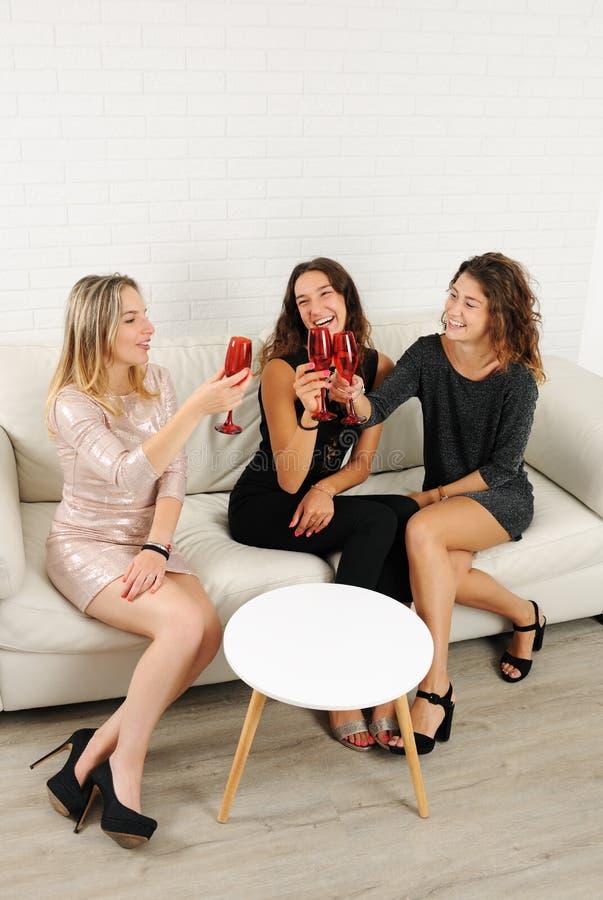 Dziewczyny świętuje z szkłami wino zdjęcia stock