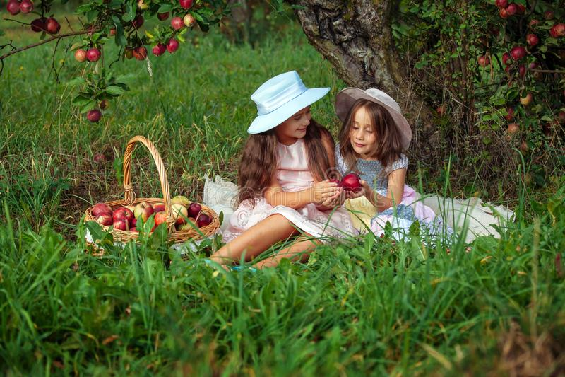 Dziewczyny dwa siostr żniwa ogródu drzew czerwieni menchii zrywania jabłek zielonej trawy kapeluszowy koszykowy tło zdjęcie royalty free