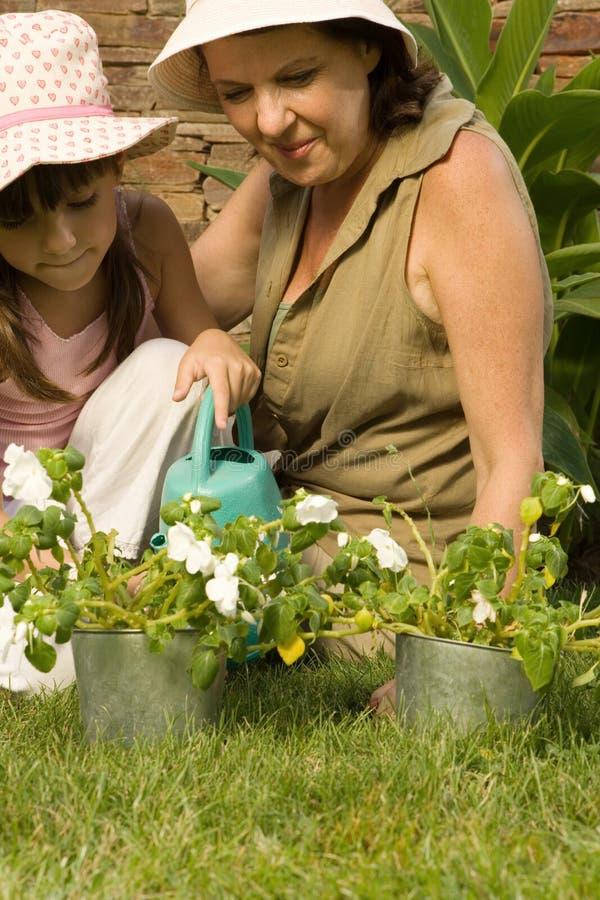 Dziewczyny i babci podlewania rośliny zdjęcie royalty free