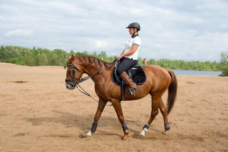 dziewczyny końska dżokeja jazda obrazy royalty free