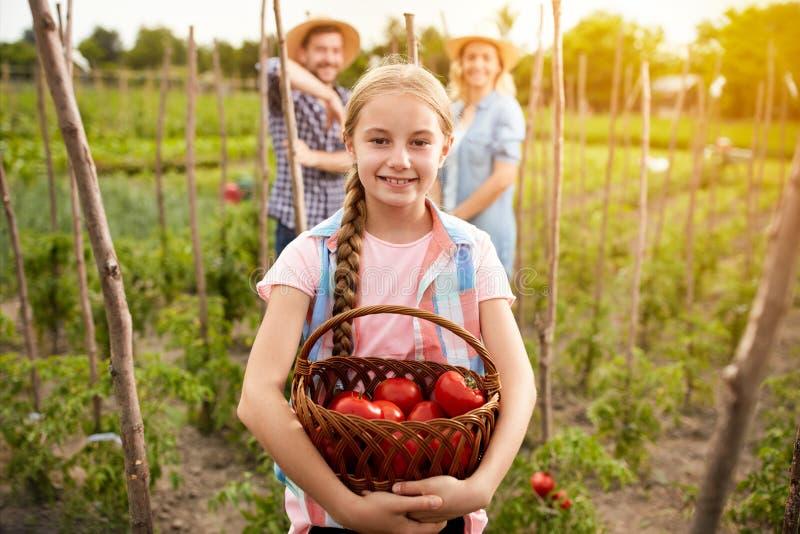 Dziewczyny mienia kosz z pomidorami zdjęcie stock