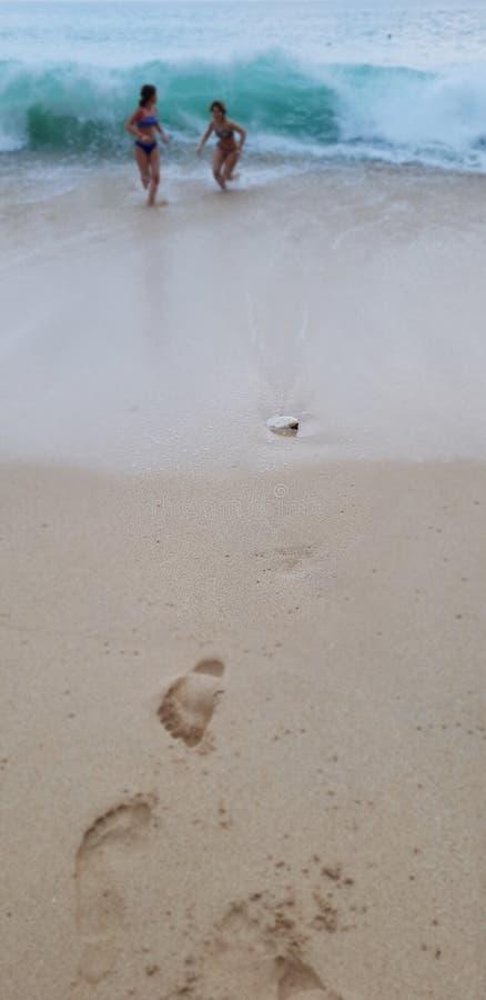 Dziewczyny na plaży obraz stock