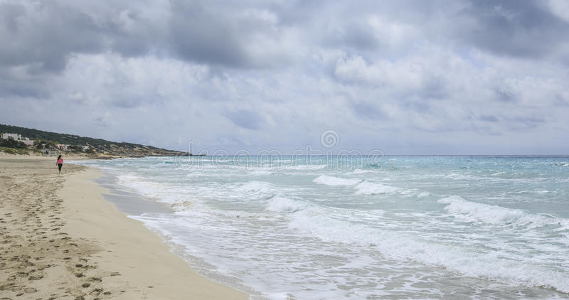 dziewczyny na plaży, fotografia royalty free