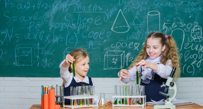 Dziewczyny na szkolnej chemii lekcji ?artuje ruchliwie z eksperymentem Edukacja szkolna Szkolni laboranccy partnery chemical obrazy stock