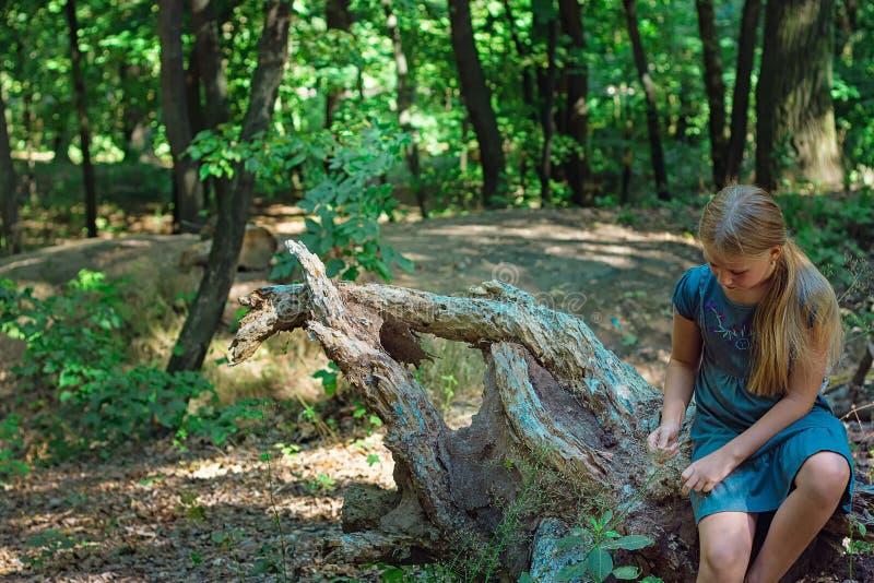 Dziewczyny obsiadanie na drzewnym fiszorku obrazy royalty free