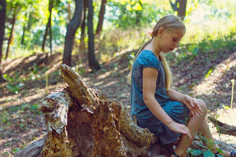 Dziewczyny obsiadanie na drzewnym fiszorku zdjęcie stock