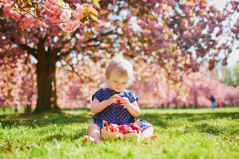 Dziewczyny obsiadanie na trawy i łasowania truskawkach obraz royalty free
