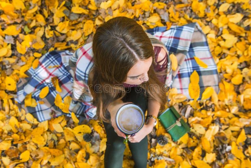 Dziewczyny obsiadanie w jesień lesie w szkockiej kracie z kubkiem kawa w rękach, Odgórny widok obraz royalty free