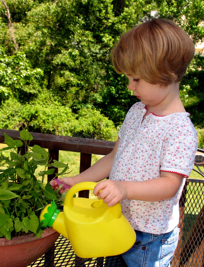 dziewczyny podlewanie kwiat fotografia royalty free