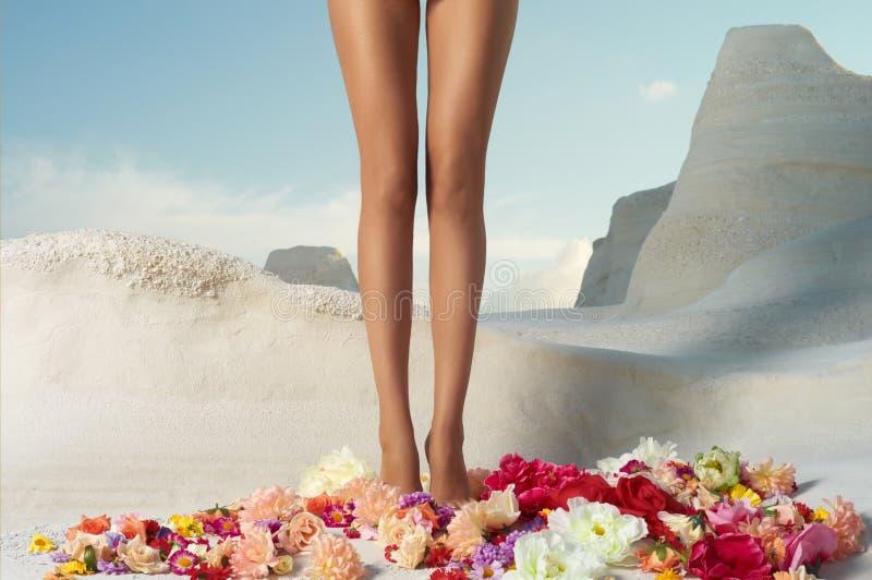 Dziewczyny pozycja w kwiatach fotografia stock