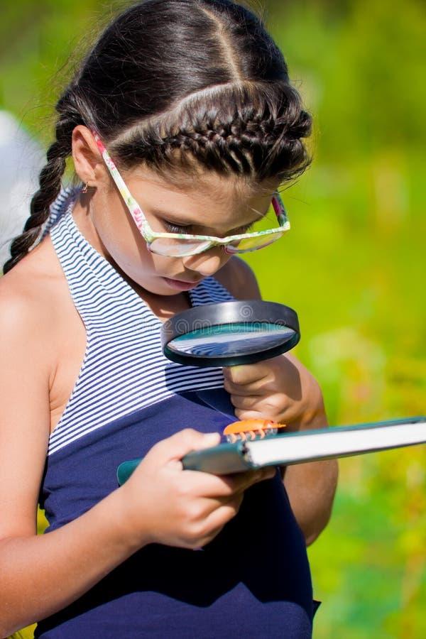 Dziewczyny spojrzenie na pluskwie z powiększać - szkło i książka zdjęcia royalty free