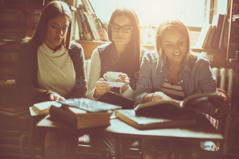 Dziewczyny studiują wpólnie w kawiarni zdjęcie royalty free