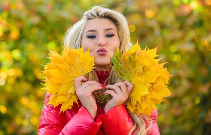 Dziewczyny twarzy chwyta wiązki marzycielscy liście klonowi Kobieta spacer w jesie? parku Dama pozuje z liść jesieni natury tłem zdjęcie stock