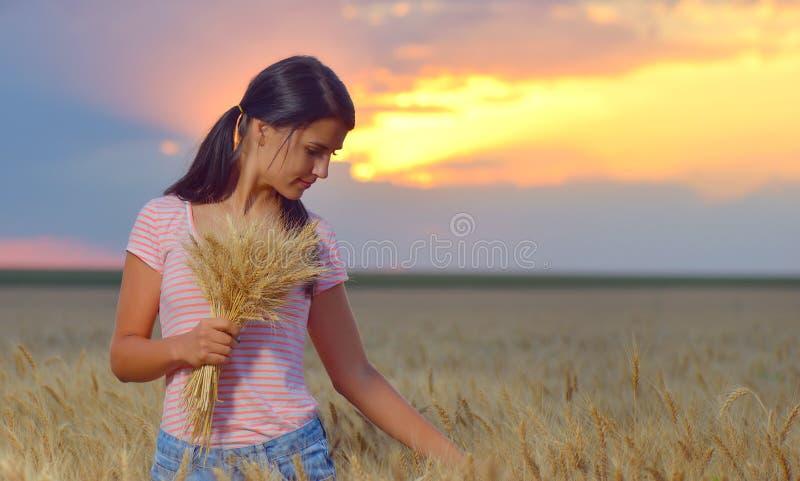 Dziewczyny uczucie uwalnia w pięknym pszenicznym polu zdjęcie royalty free