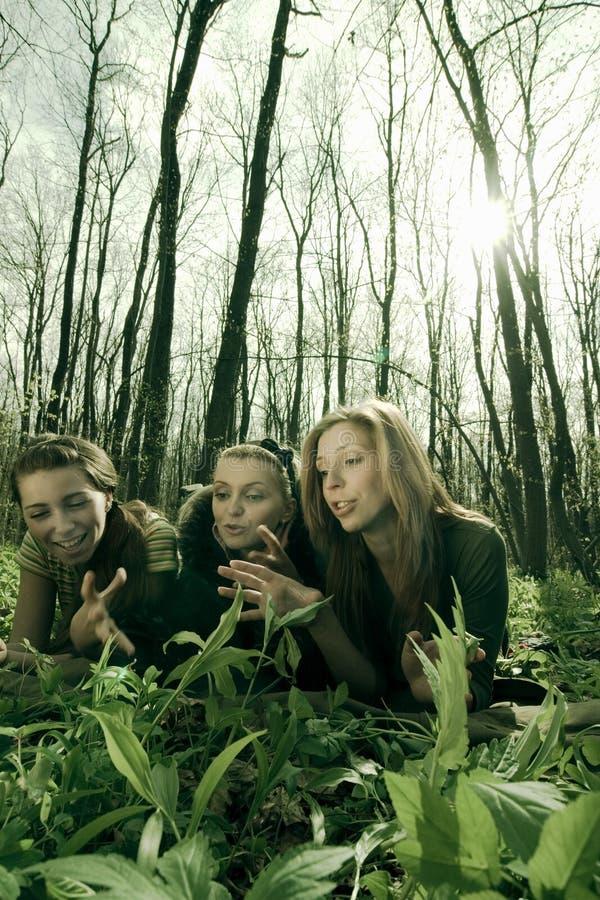 dziewczyny z lasu zdjęcie stock