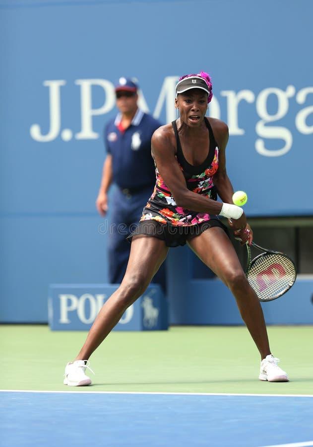 Dziewięć czasów wielkiego szlema mistrza Venus Williams duri fotografia royalty free