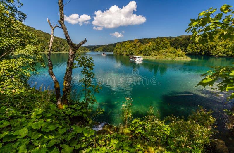 Dziewicza natura Plitvice jeziora parki narodowi, Chorwacja obrazy royalty free