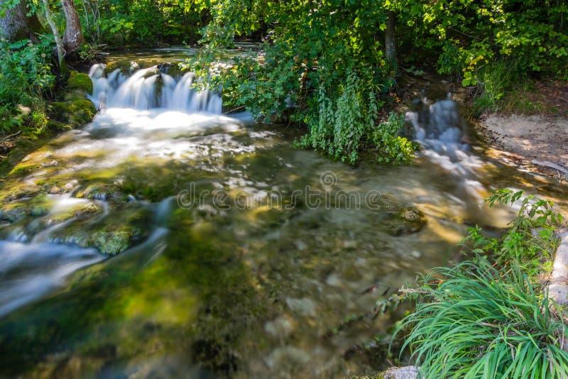 Dziewicza natura Plitvice jeziora parki narodowi, Chorwacja fotografia royalty free