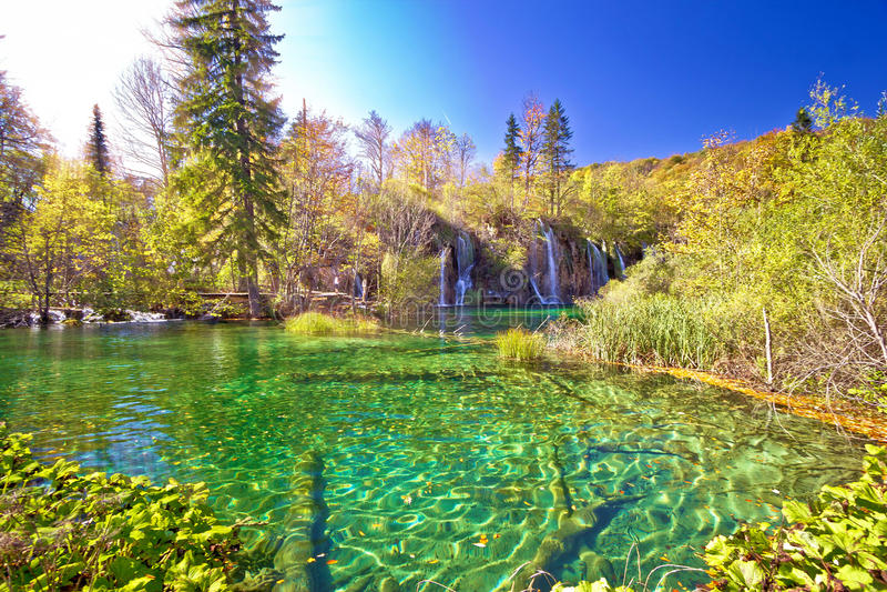 Dziewicza natura Plitvice lakees park narodowy obrazy stock