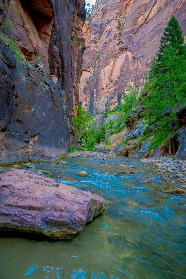 Dziewicza rzeka w Zion parku narodowym lokalizować w Południowo-zachodni Stany Zjednoczone i przesmyki, blisko Springdale, Utah obrazy royalty free