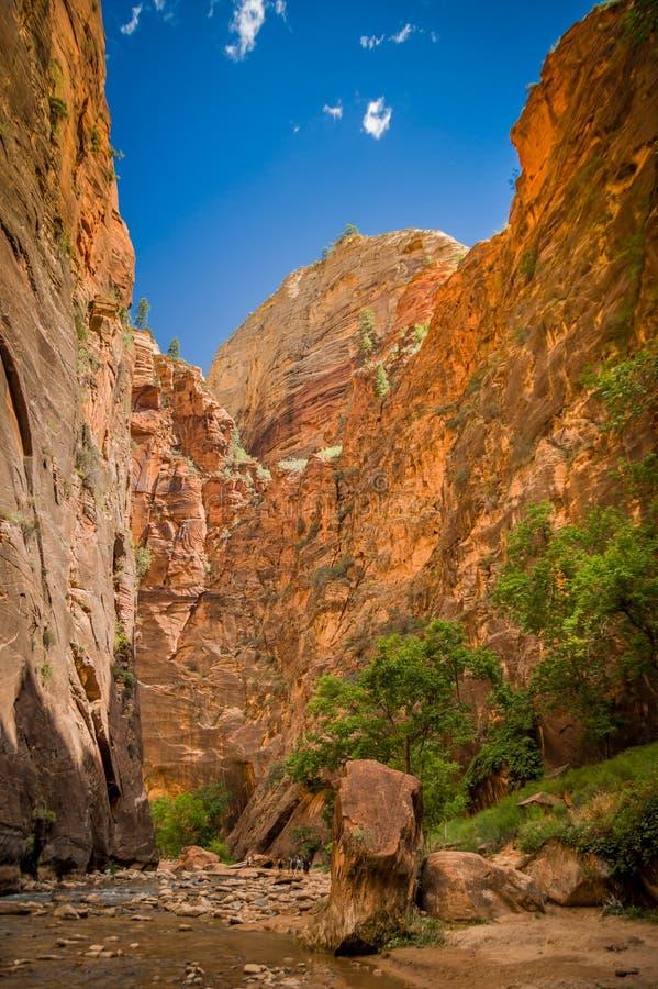Dziewicza rzeka w zion parku narodowym Utah zdjęcia stock