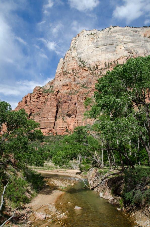 Dziewicza rzeka w Zion parku narodowym utah fotografia stock