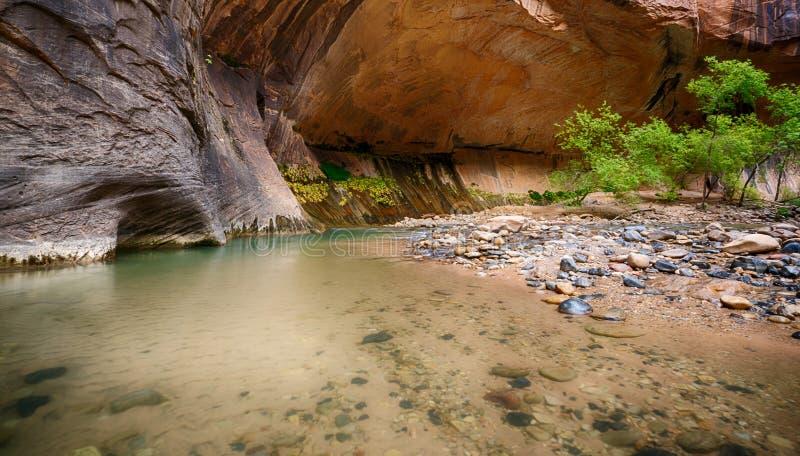 Dziewiczy rzeka przesmyki fotografia stock