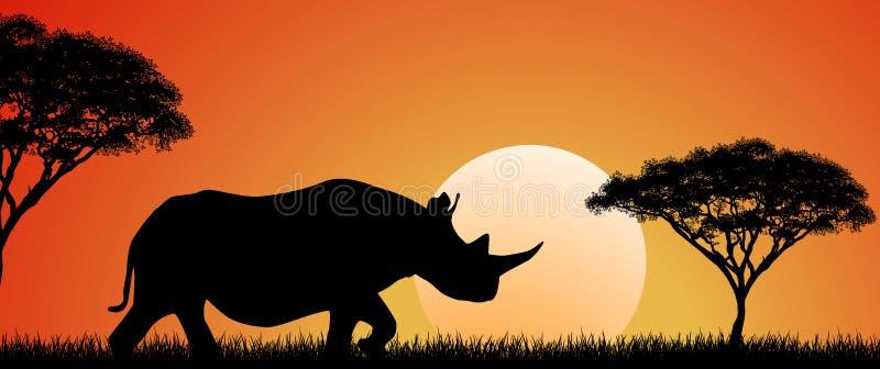 Dzika Afrykańska nosorożec przy zmierzchem royalty ilustracja