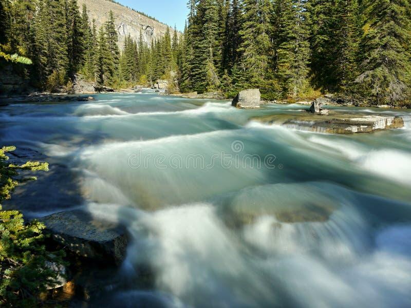 Dzika glacjalna halna rzeka obrazy royalty free