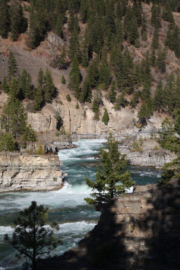 Dzika Kootenai rzeka Spada w Północno-zachodni Montana zdjęcia royalty free