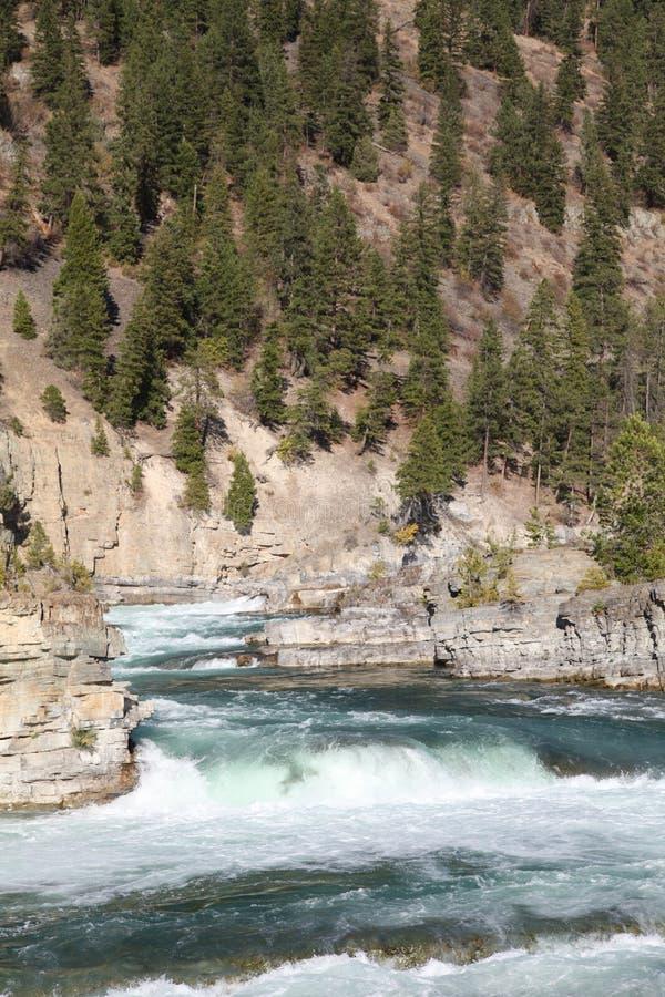 Dzika Kootenai rzeka Spada w Północno-zachodni Montana2 obraz stock