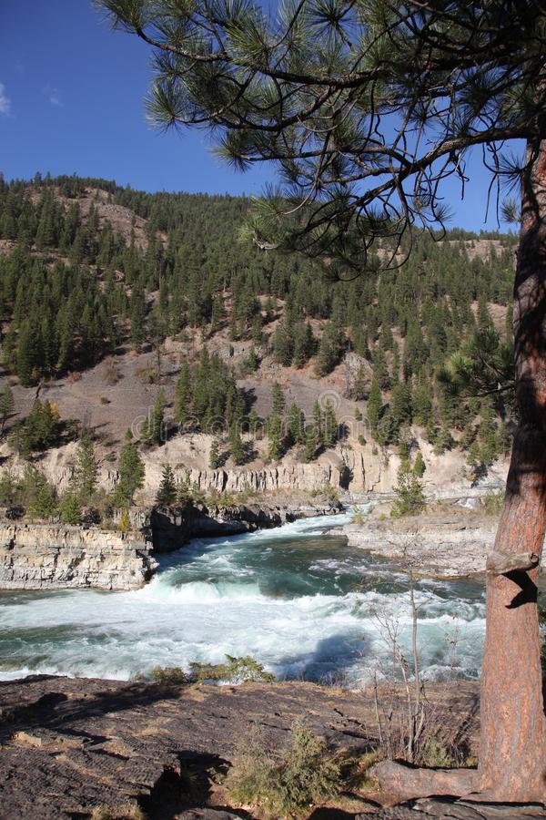 Dzika Kootenai rzeka Spada w Północno-zachodni Montana2 zdjęcie stock