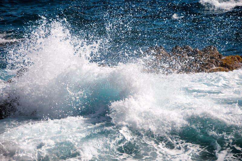 Dzika linia brzegowa Aruba w Karaiby obraz royalty free