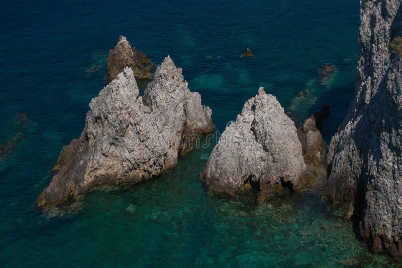 Dzika natura: ja pagliai Tremiti wyspy w Puglia fotografia royalty free