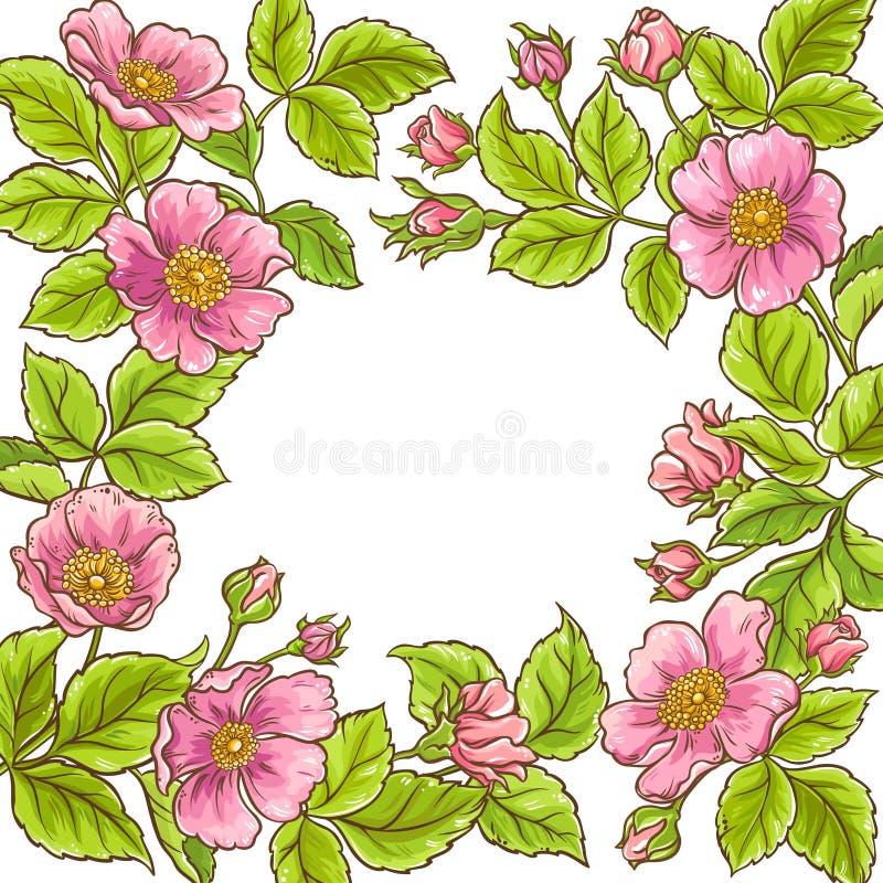Dzika różana wektor rama ilustracji