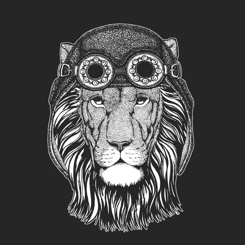 Dzika ręka rysujący lwa obrazek dla tatuażu, emblemat, odznaka, logo, łata, koszulka Chłodno zwierzęcy jest ubranym lotnik, motoc ilustracji