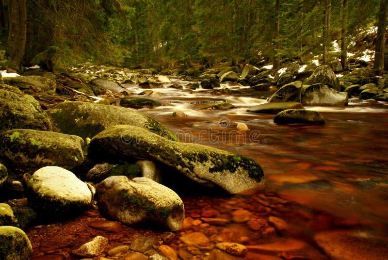 dzika rzeka zdjęcie stock