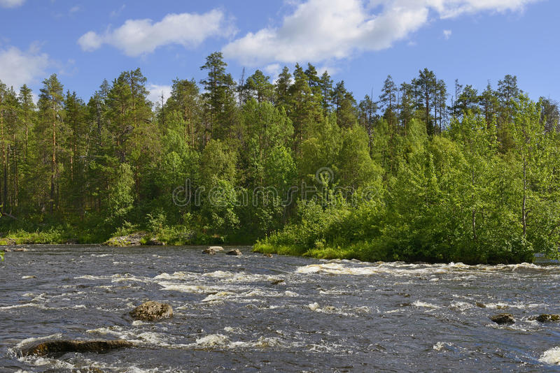 Dzika rzeka. Północny krajobraz obrazy stock