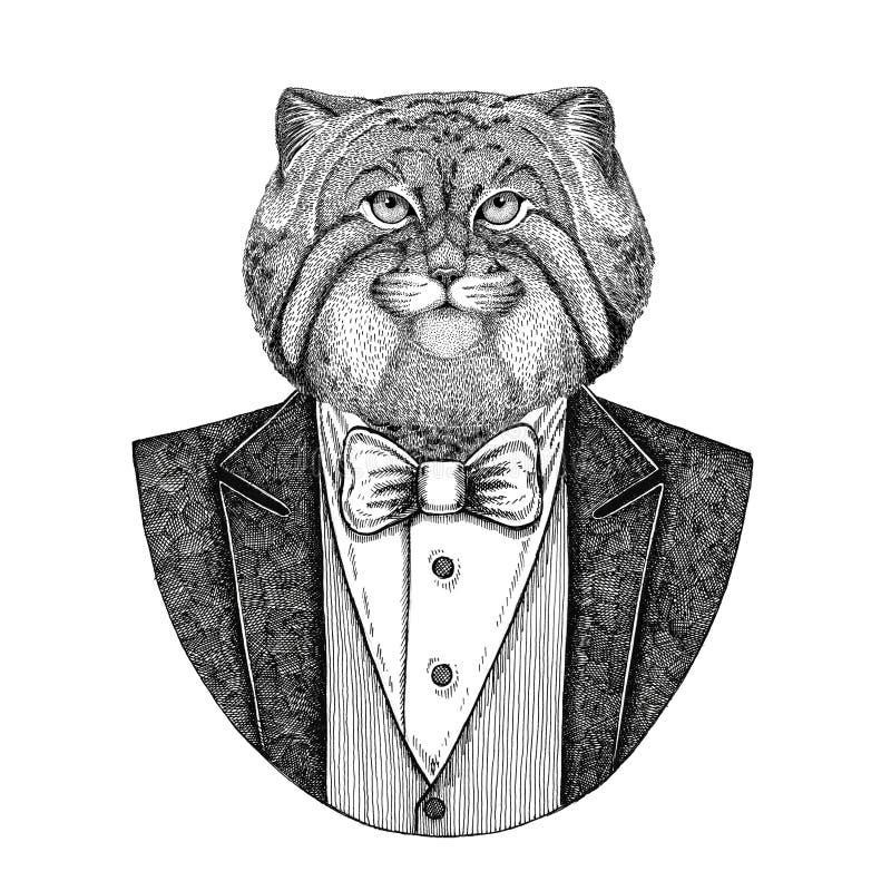 Dzika zwierzęca ręka rysująca kota Manul modnisia ilustracja dla tatuażu, emblemat, odznaka, logo, łata, koszulka ilustracja wektor
