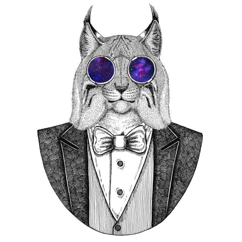 Dzika zwierzęca ręka rysująca kota rysia rysia rudy bryka modnisia ilustracja dla tatuażu, emblemat, odznaka, logo, łata, koszulk ilustracji