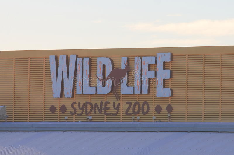 Dziki życie zoo Sydney Australia zdjęcie stock